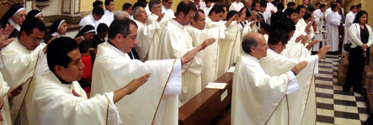 """Resultado de imagem para Cardeal Kasper, sobre padres casados: """"Agora a bola está no telhado das conferências episcopais"""""""