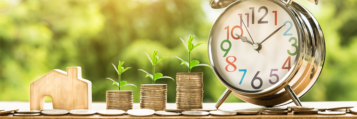 18-05-2018-moedas-sustentabilidade-casa-meio-ambiente_pixabay.jpg