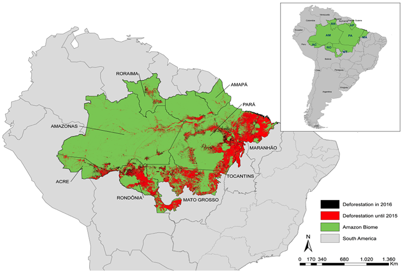 Mapa da Amazônia Brasileira(Foto: IPAM Amazônia)