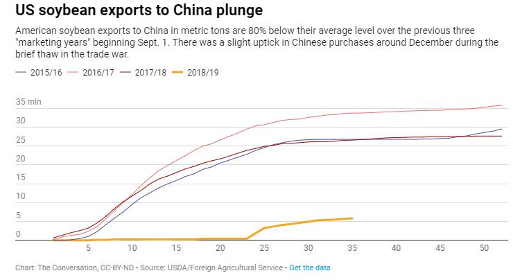 Queda das exportações de soja dos EUA para a China – The Conversation/Ian Sheldon