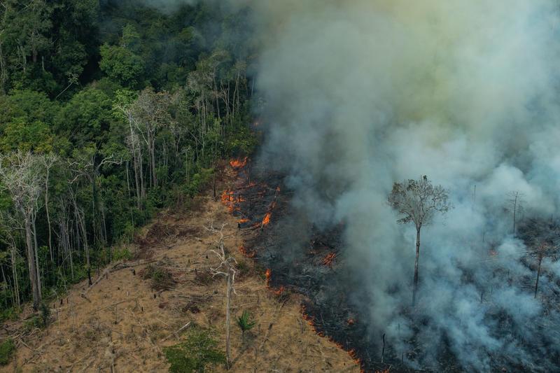 Vista aérea de uma área de queimadas no estrato de Rondônia – Victor Moriyama / Greenpeace