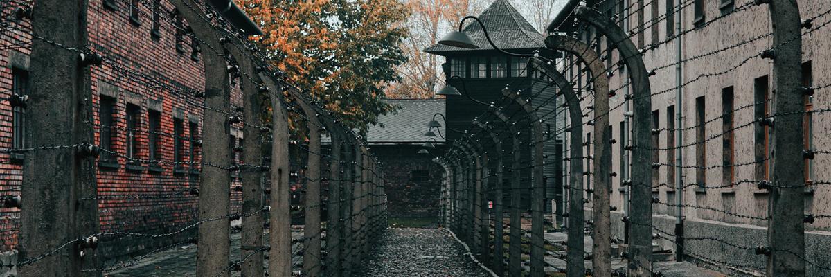 """Resultado de imagem para """"Onde estava Deus?"""" Por que Auschwitz é o símbolo do mal"""