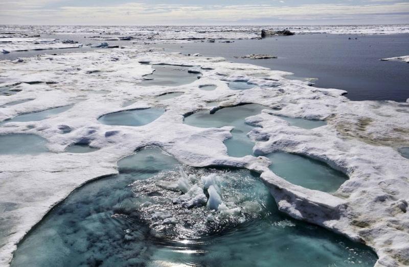 Polígonos de permafrost na região do ártico (Foto: Wikimedia Commons)