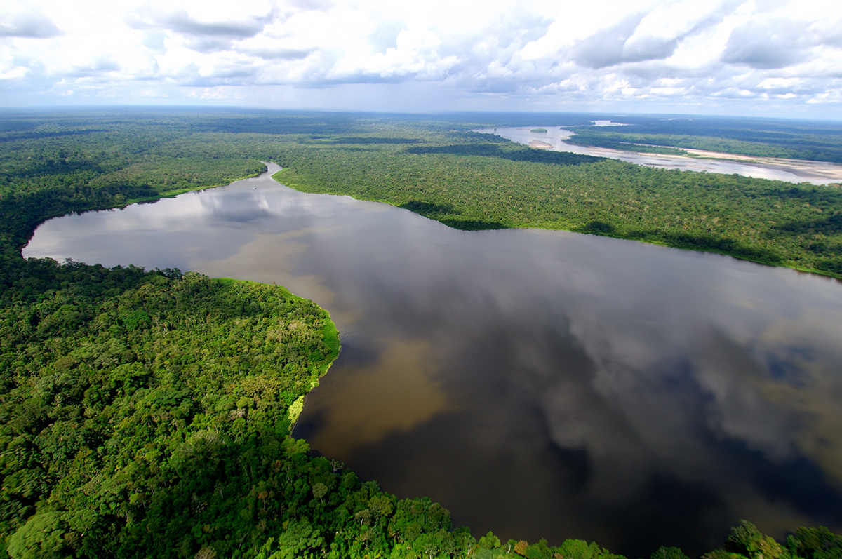 Resultado de imagem para Sínodo da Amazônia revela sagacidade política do papa
